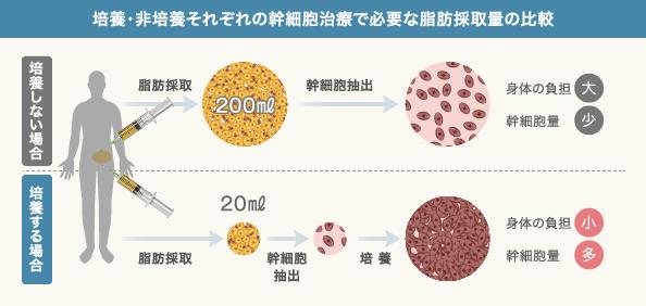 なぜ幹細胞を培養するのか