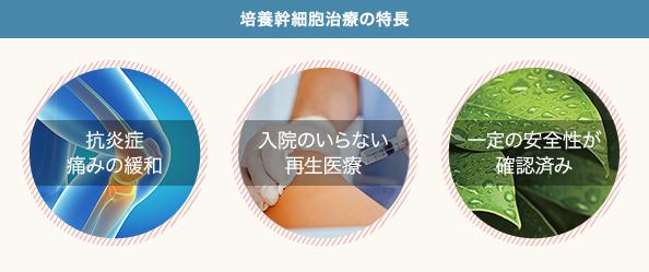 ひざへの培養幹細胞治療の特長