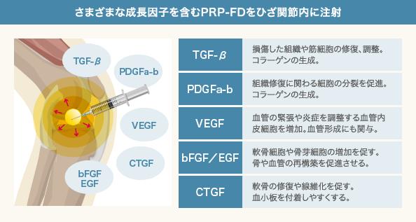 PRP-FD注射に含まれる成長因子とその働き