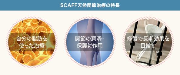 SCAFF天然関節治療の特長